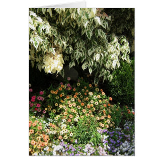 Jardin dans la carte de voeux d'ombre