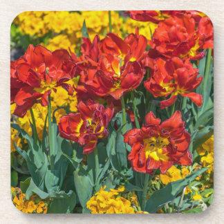 Jaune et rouge fleurit les dessous de verre en