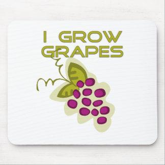 J'élève des T-shirts et des cadeaux de raisins Tapis De Souris
