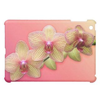 Jet exotique d'orchidée coque iPad mini