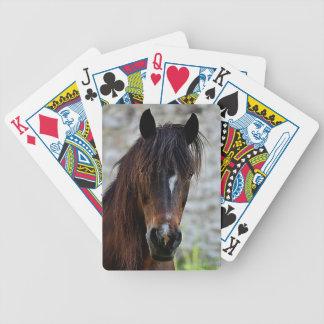 Jeu De Cartes Beau cheval de Brown
