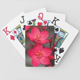 Jeu De Cartes Fleurs tropicales rouges et roses des Fidji