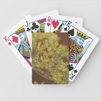 Jeu De Cartes Gouttelettes sur la fleur de graine d'aneth