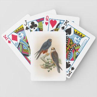 Jeu De Cartes oiseaux Orange-à jambes de Gould de faucon de