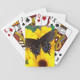 Jeu De Cartes Papillon noir de machaon