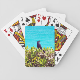 Jeu De Cartes Petit oiseau noir mignon