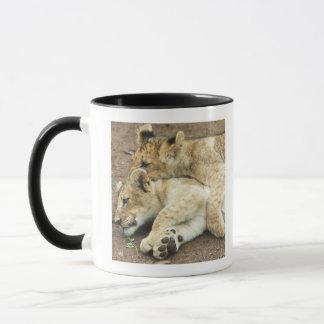Jeu de deux petits animaux de lions mug