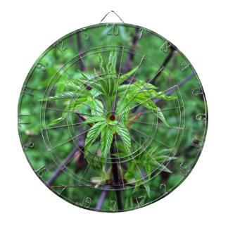 Jeu De Fléchettes Panneau de dard de jeune plante de maronnier