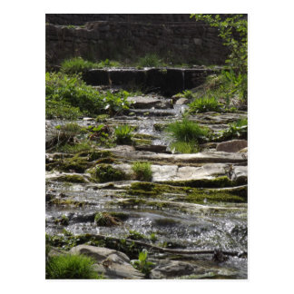Jeune rivière carte postale