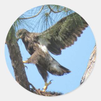 Jeunes autocollants de bout droit de yoga d'Eagle