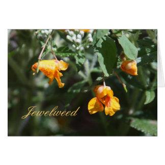 Jewelweed Briefkaarten 0