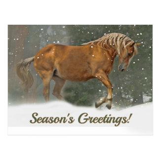 Joli cheval de trait de palomino dans Noël de Carte Postale
