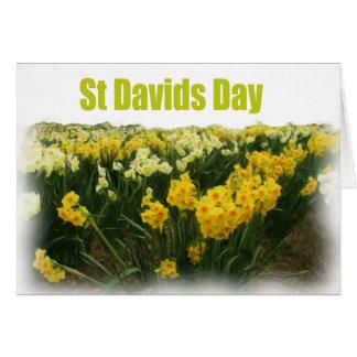Jour de Davids de saint Carte