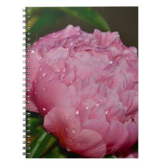 Journal floral rose de photo