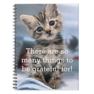 Journal reconnaissant de chaton