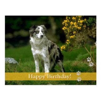 Joyeux anniversaire - carte postale de chien
