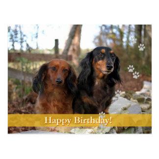 Joyeux anniversaire ! - carte postale de chien