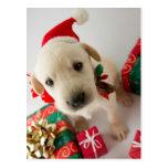 Joyeux Noël - chiot mignon de Labrador Cartes Postales