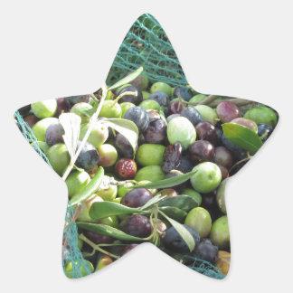 Juste olives sélectionnées sur le filet pendant le sticker étoile