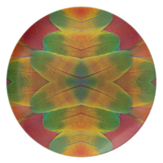Kaléidoscope de plume de perroquet d'ara assiettes en mélamine