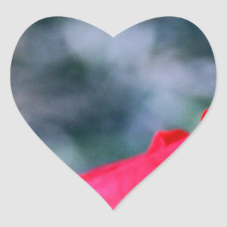 Ketmie 4 sticker cœur