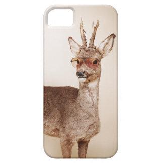 Koele dieren in zonnebril iPhone 5 hoesje
