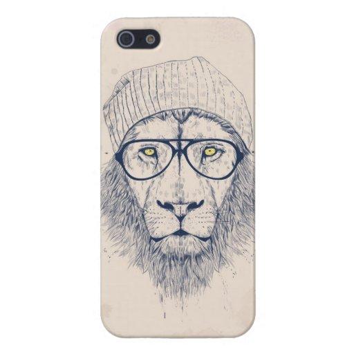 Koele leeuw iPhone 5 covers