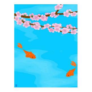 Koi et carte postale de Sakura