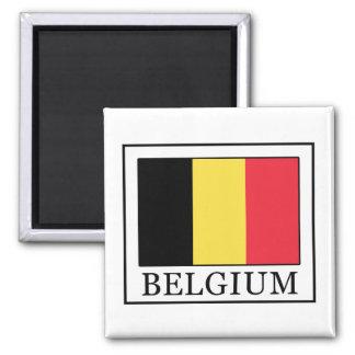 La Belgique Magnet Carré