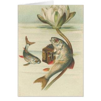 la carte de cru de poissons de chant