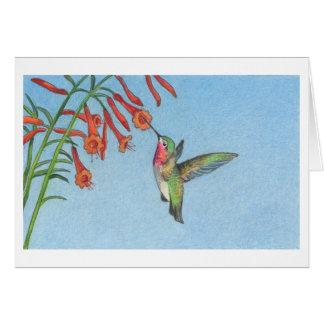 La carte de note de colibri