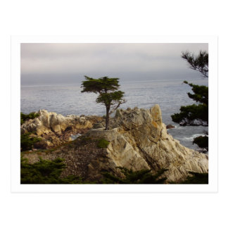 La carte postale solitaire de la Chypre