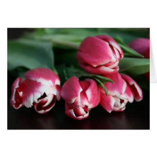 la collection de tulipe carte