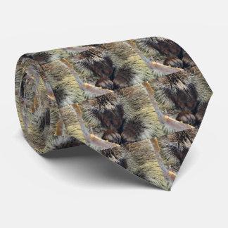 La cravate des hommes de porc-épic
