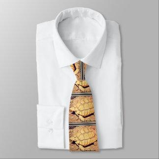 La cravate des hommes de tortue de désert