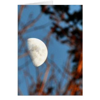 La demi-lune par les branches stériles carte de vœux