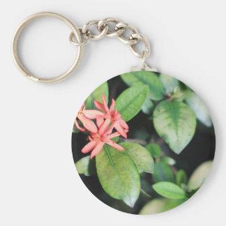 La fleur de corail exotique tropicale, Kew fait du Porte-clé Rond
