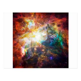 La galaxie de chat cartes postales
