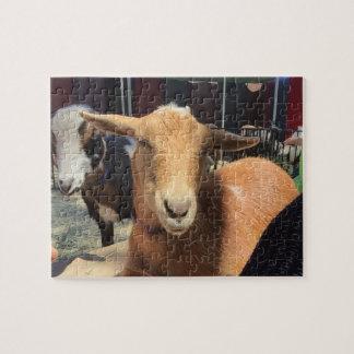 La savane le puzzle de chèvre et d'ami