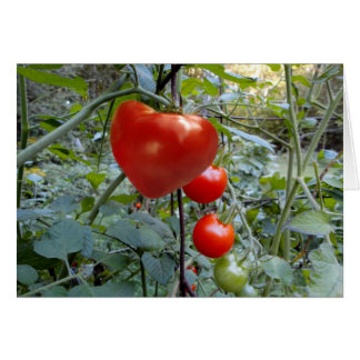 """La tomate en forme de coeur """"ME SÉLECTIONNENT ! """" Carte"""