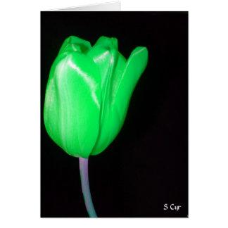 La tulipe de Patrick de saint, S Cyr Carte De Vœux