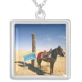 La Tunisie, région de Ksour, Ksar Ghilane, cheval Collier