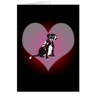 Laboratoire noir de Connie ma carte de coeur