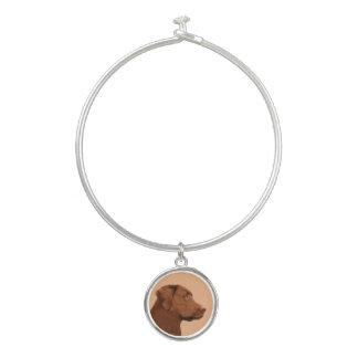 Labrador retriever (chocolat)
