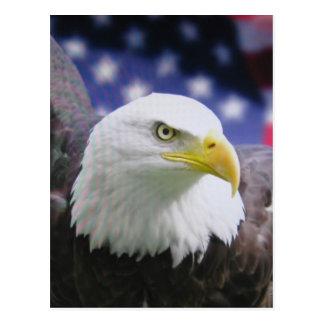 L'aigle américain carte postale