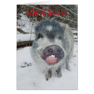 Carte Laissez lui neiger carte de porc de Noël