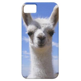Lama Cria de lis Coque iPhone 5