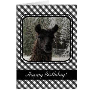 Lama d'hiver et guingan noir carte de vœux