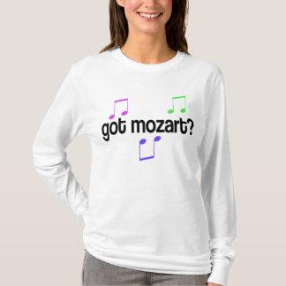 L'amusement a obtenu le T-shirt de musique de
