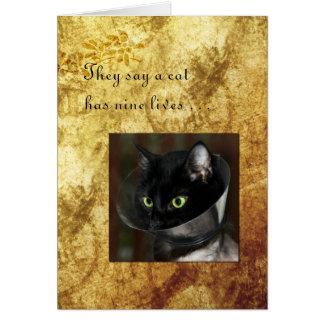 L'animal familier obtiennent bien avec le chat noi carte de vœux
